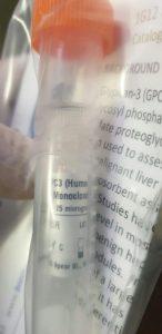 Snelle diagnose van tuberculose bij dromedariskameel (Camelus dromedarius) met behulp van op laterale flow-assay gebaseerde kit.